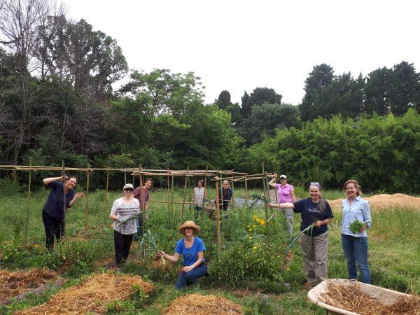 Voluntariado en la Huerta de Reciduca